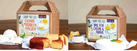 Vegan cheese making kit for the vegan mom