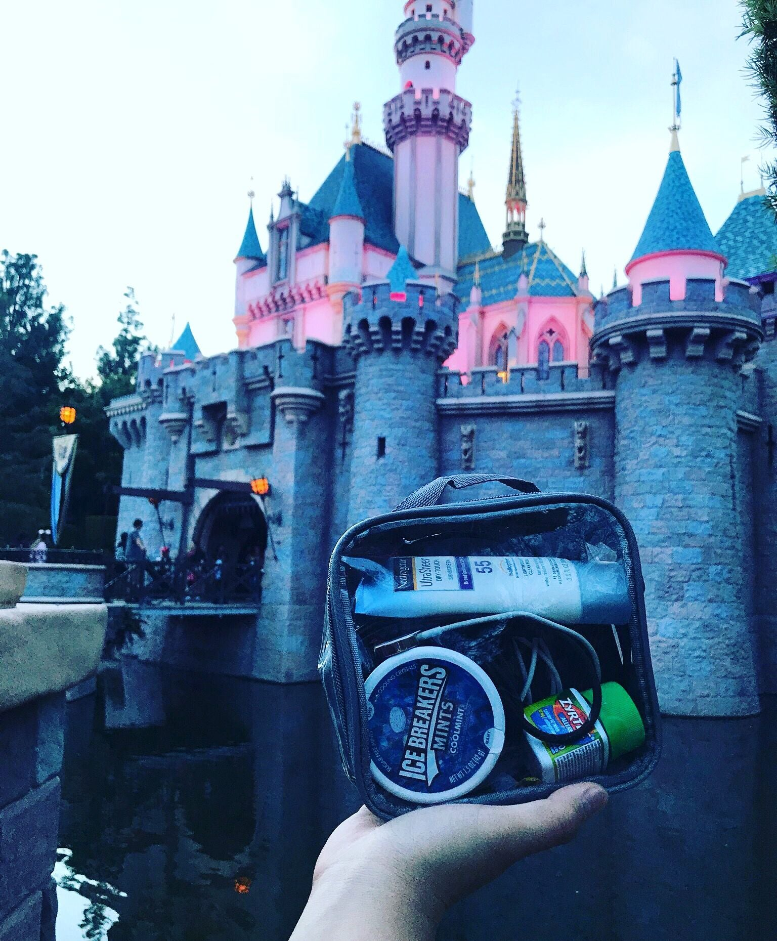 Disneyland hygiene kit in an extra small cube
