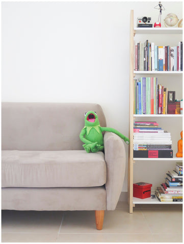 Kermit the frog in couch with bookshelves on the side