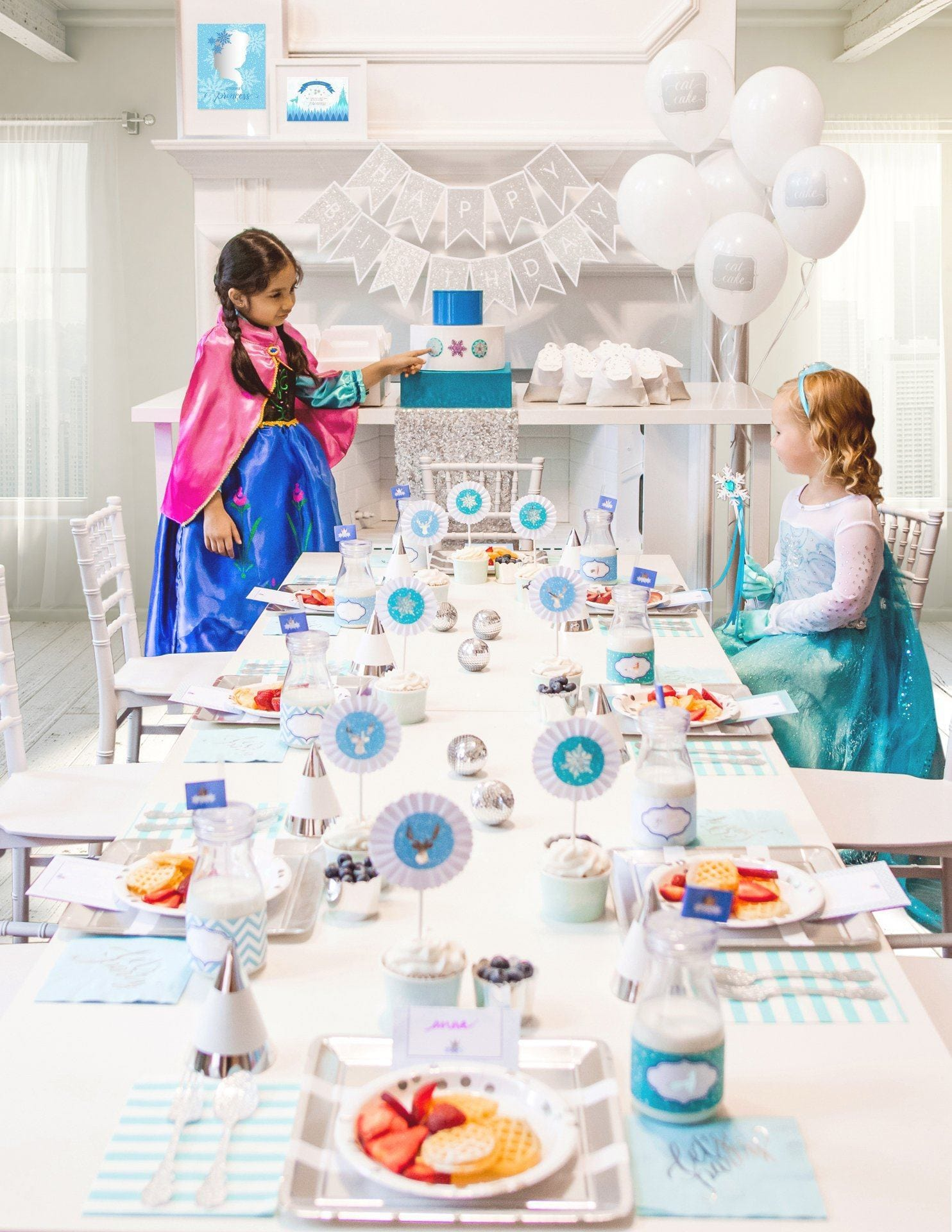 Frozen birthday party in a box