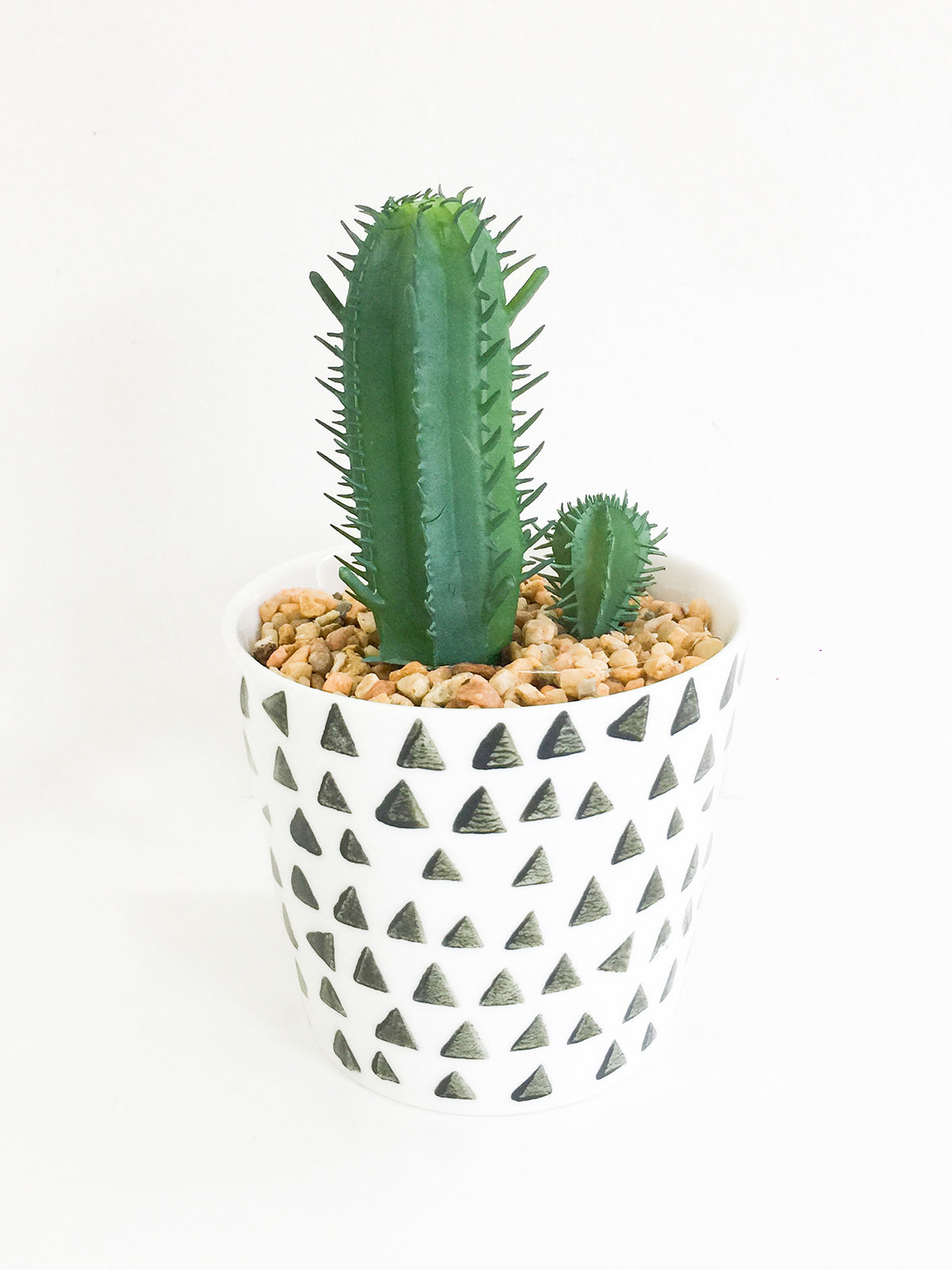 DESERT HEAT SUCCULENT-TRIANGLE POT