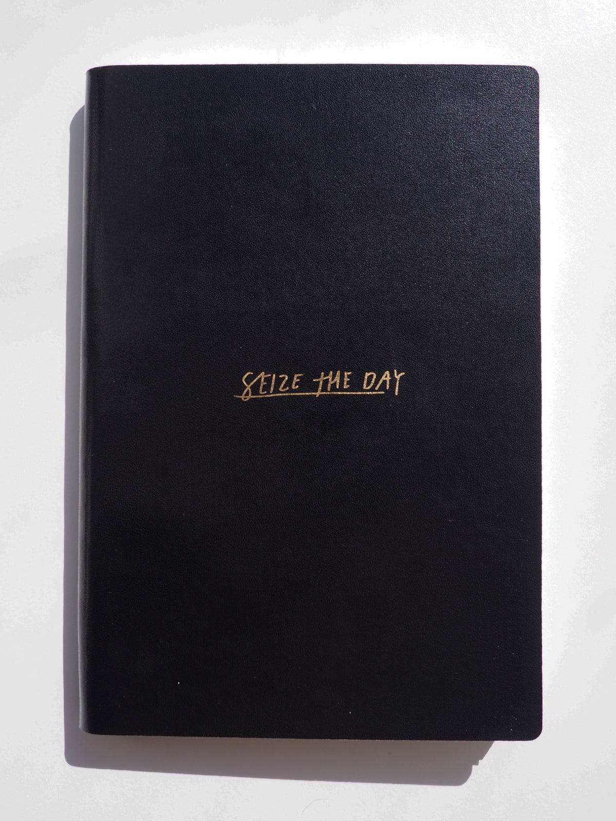 SEIZE THE DAY NOTEBOOK