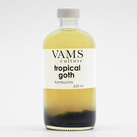 Tropical Goth - Kombucha 250 ml