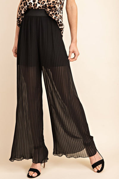 Sheer Perfection Pleated Wide Leg Pants