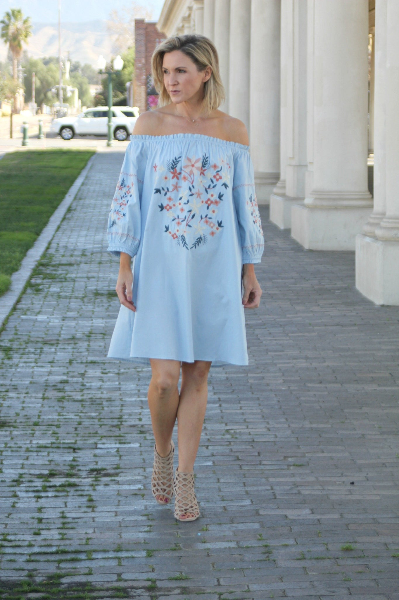 The Sunny Embroidered Dress in Sky Blue