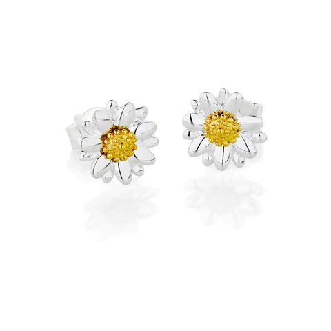 Daisy - Bellis Daisy 7mm Stud Earrings E2004