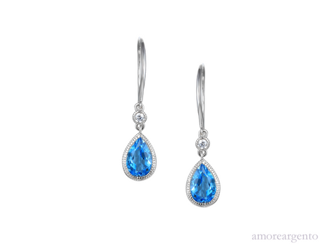 Amore Devotion Earrings 9289SILCZ/BT