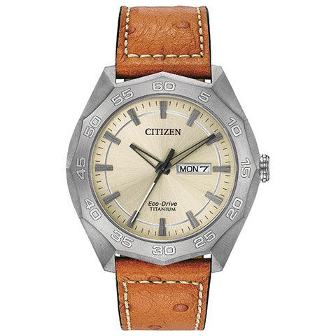 Citizen Mens Eco-Drive Watch AW0060-11P