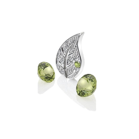 Hot Diamonds Anais Earth Element Charms AC100 2007232