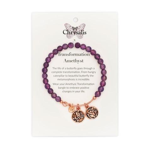 Chrysalis - Transformation Amethyst Bangle 4214030
