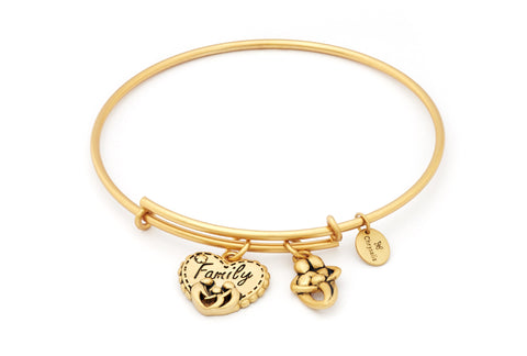 Chrysalis - Family Expandable Gold Plated Bangle X
