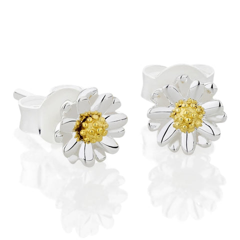 Daisy - Bellis Daisy 6mm Stud Earrings E2002