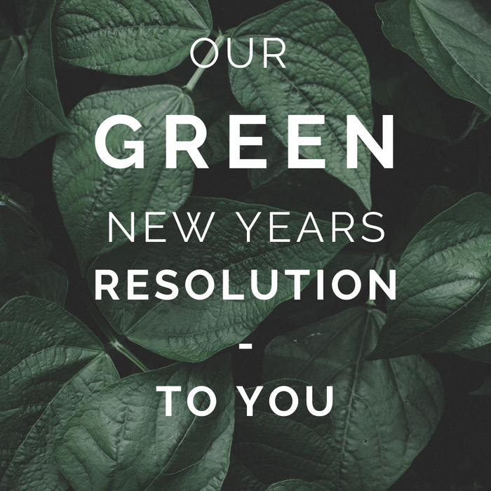 Our Green New Years Resolution To You