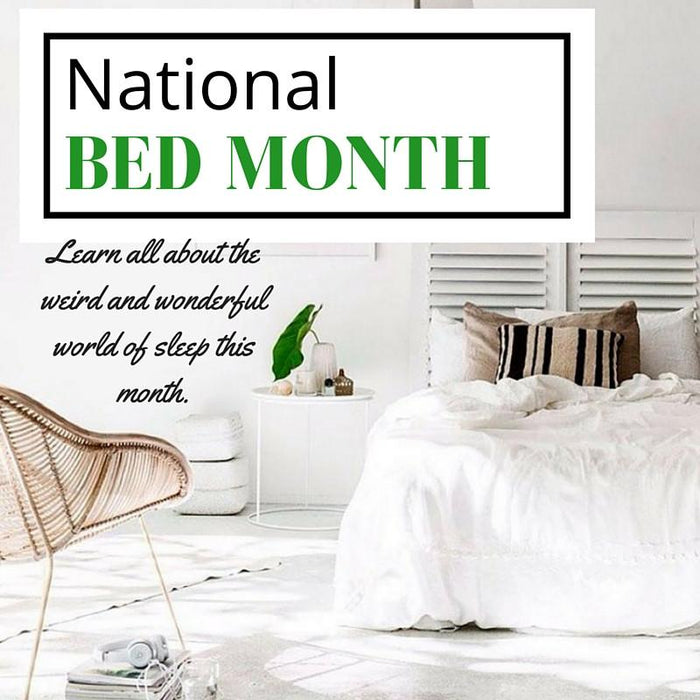 National Bed Month - March 2016 | Putnams