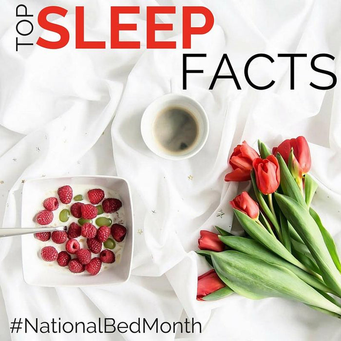 Sleep myths debunked: National Bed Month 2016 | Putnams