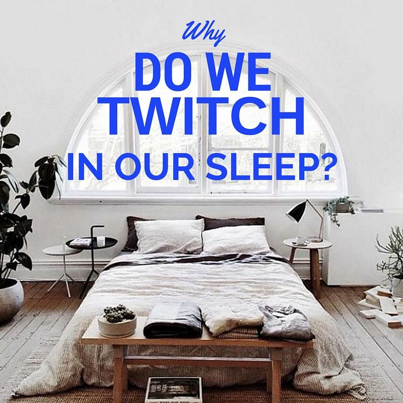 Why do we twitch in our sleep? | Putnams