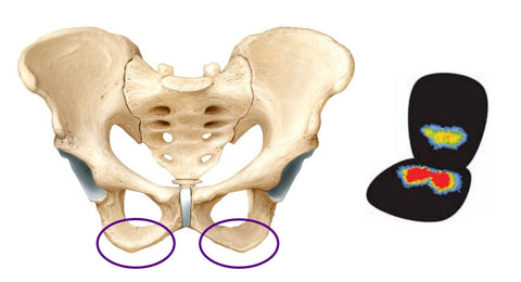 How To Reduce Pressure On Your Bony Parts When Sitting Putnams