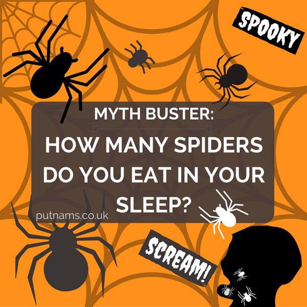How many spiders your sleep eat consumer fall into mouth uk england great Britain