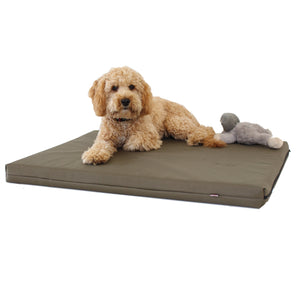 Memory Foam Dog Bed - Putnams