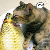Realistic Fish toy for cat