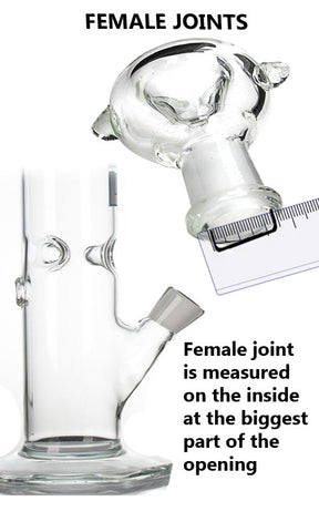 Female Joint Glass Bong