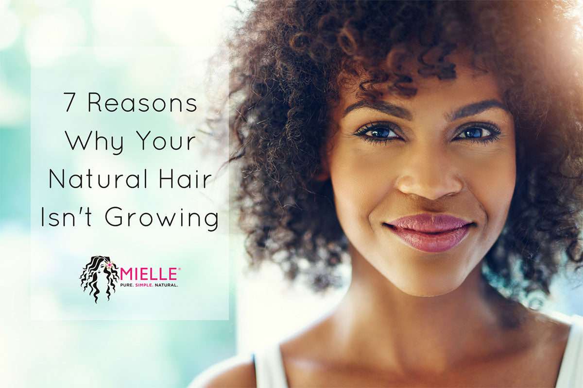 7 Reasons Why Your Natural Hair Isn T Growing Mielle