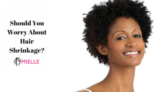 Hair Care Tips Should You Worry About Hair Shrinkage Mielle