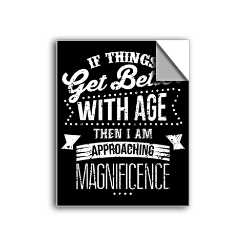 "FREE SHIPPING - ""Gets Better With Age"" Vinyl Decal Sticker (5"" tall) - Limited Time Only!"