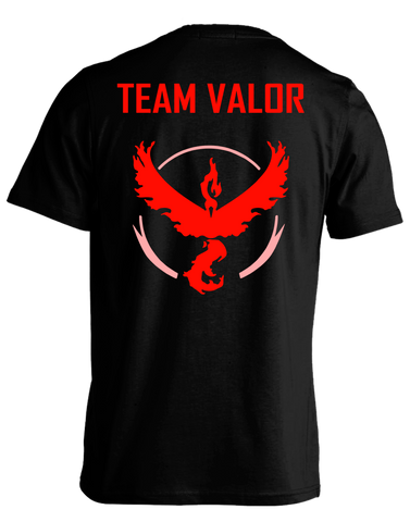 Pokemon - Team Valor