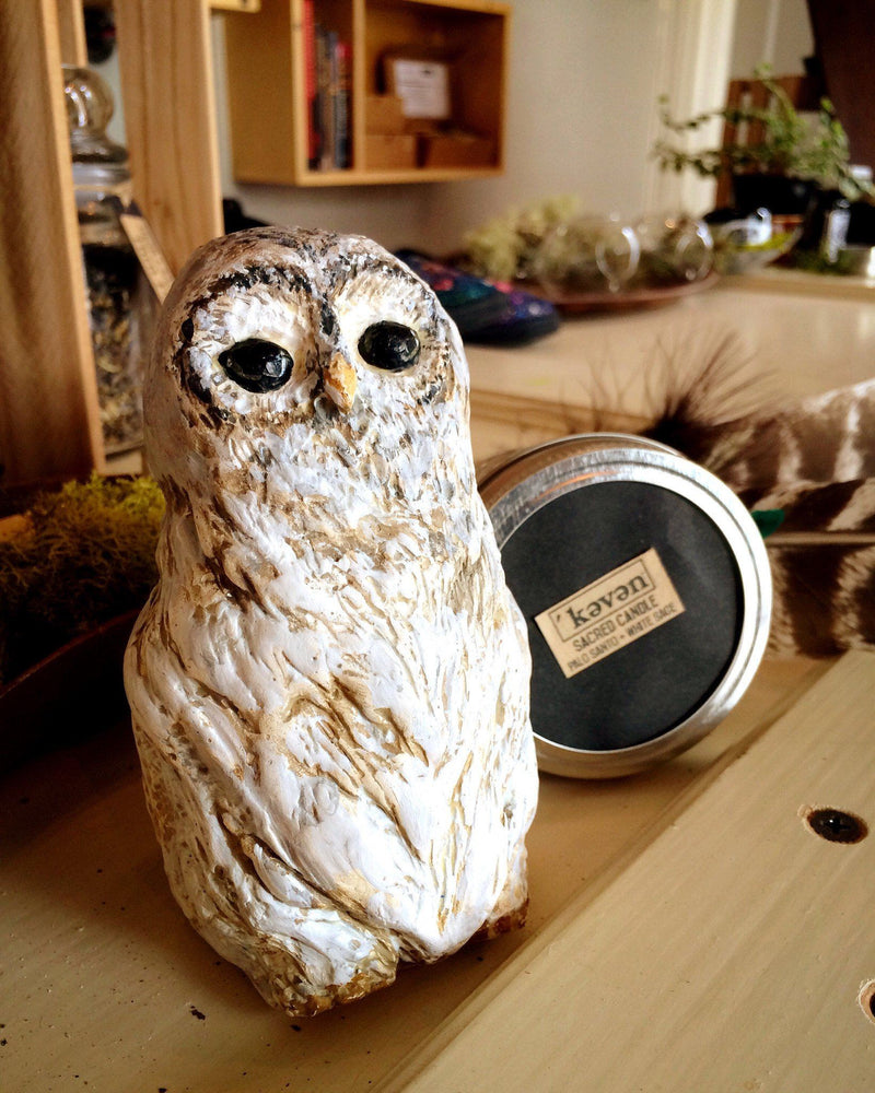 Figurines - Protection Owl - Figurine
