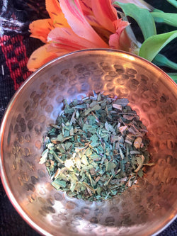 Echinacea (Echinacea Angustifolia) - Witching Herbs - Keven Craft Rituals