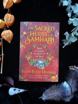 Sacred Herbs of Samhain: Plants to Contact the Spirits of the Dead