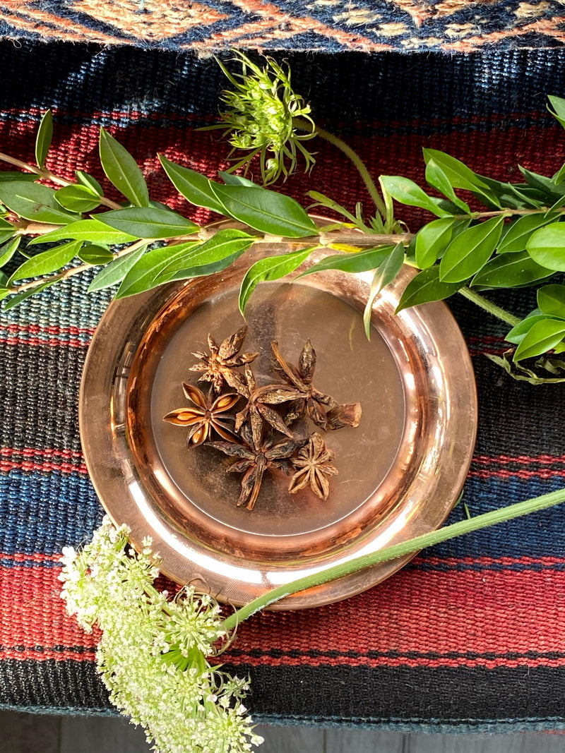 Star Anise (Illicium verum) - Witching Herb - Keven Craft Rituals