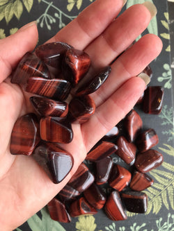 Red Chatoyant Tiger's Eye - Tumbled (Sm - Med) - Keven Craft Rituals