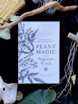 Plant Magic for the Beginner Witch : An Herbalist's Guide to Heal, Protect and Manifest
