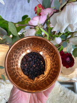 Black Elderberry (Sambucus nigra) - Witching Herbs - Keven Craft Rituals