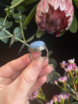 Angelite Ring on Sterling Silver - Size 7.5