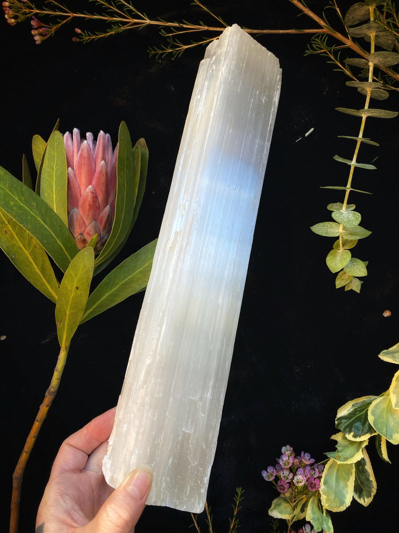 Selenite Wands - XXL Chunks