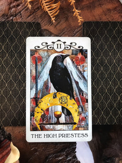 Crow Tarot - Keven Craft Rituals