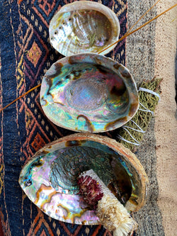 Abalone Shell - Traditional Incense/Sageing Base - Keven Craft Rituals