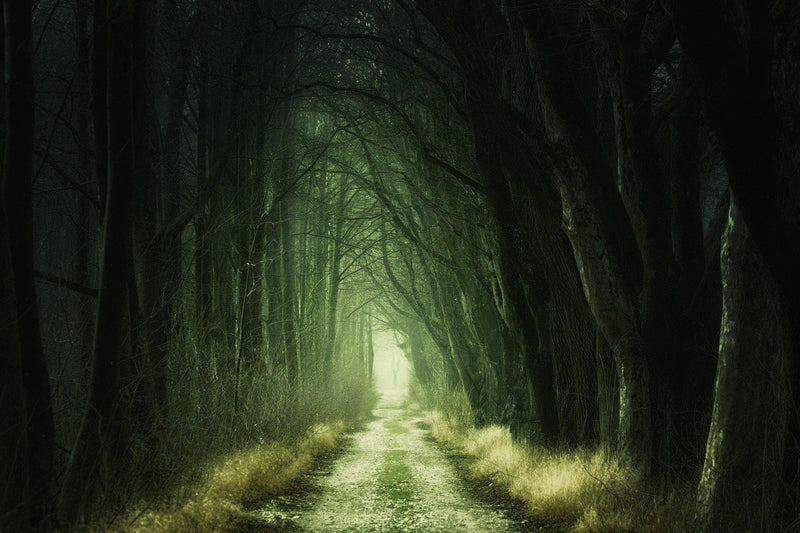 Samhain Ritual: Meeting at the Crossroads Oct 26, 5-7:30 PM