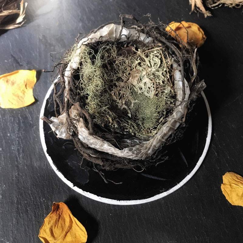 Ritual Nests - Keven Craft Rituals