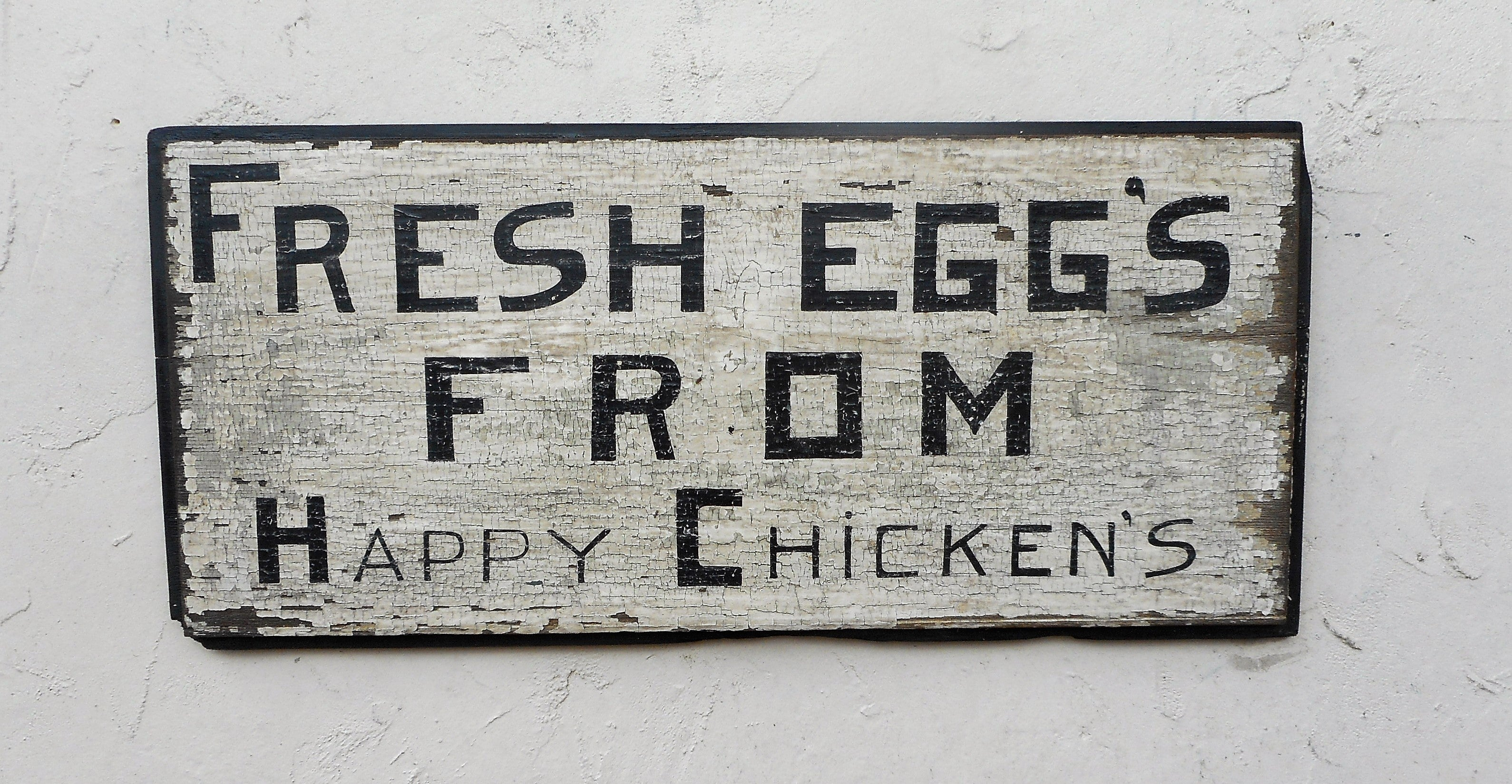 Fresh Eggs From Happy Chickens
