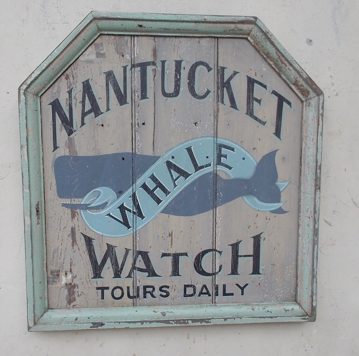 Nantucket Whale Watch