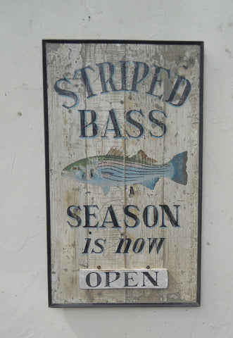 Striped Bass Season