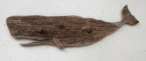 Weathered Whale
