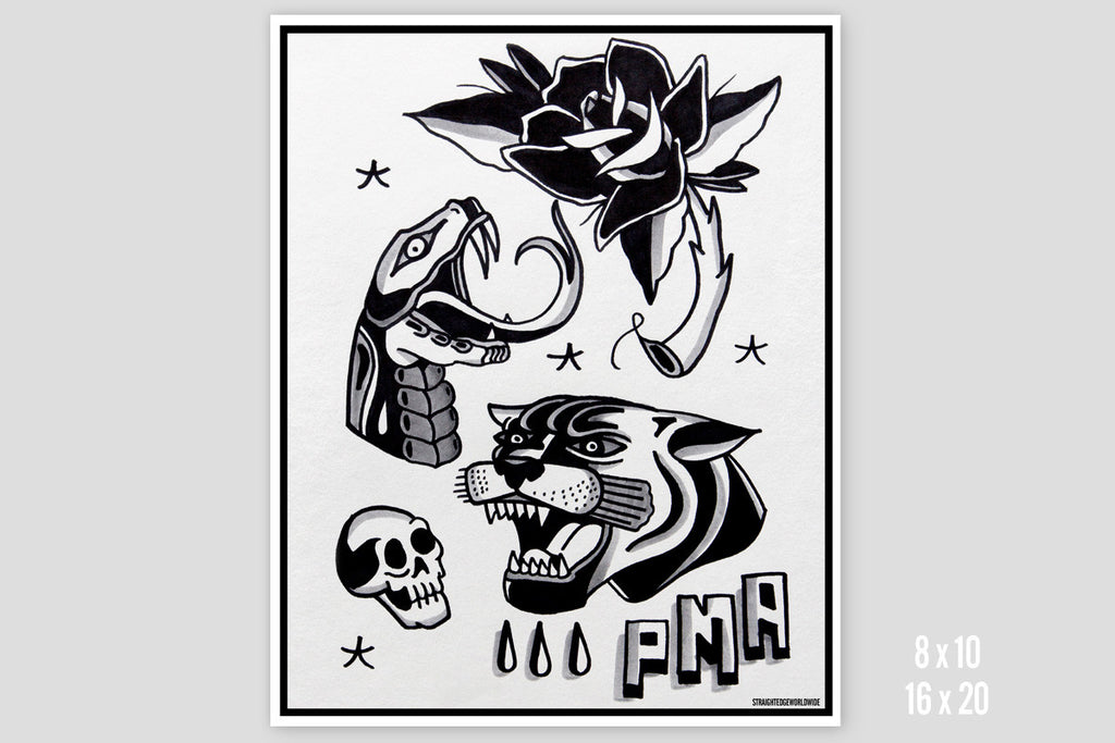 PMA Flash Sheet Print