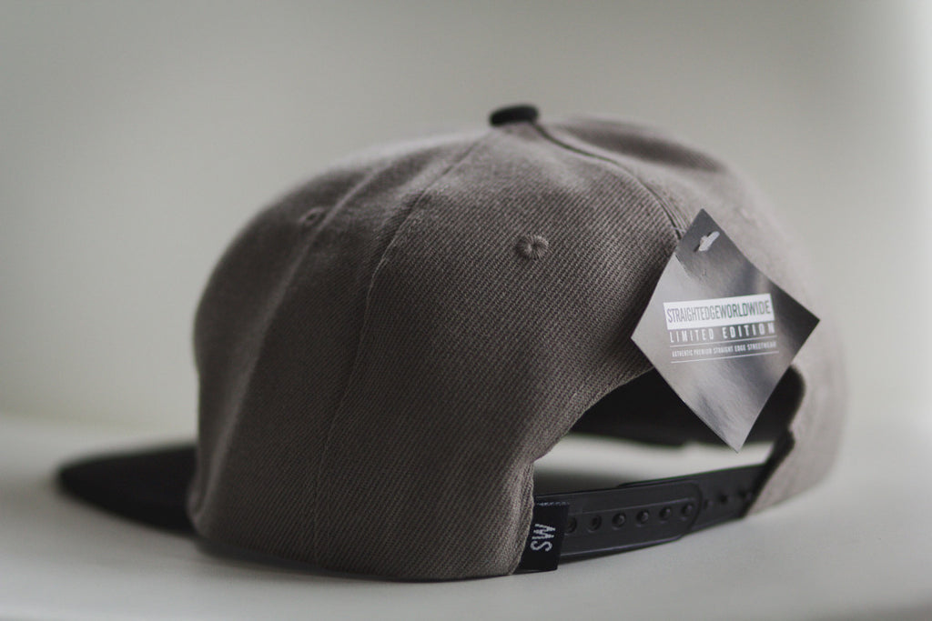 Drug Free Snapback in Gray