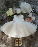 Lovely Basic Style Flower Girl Dress Party Dress PD-AO014