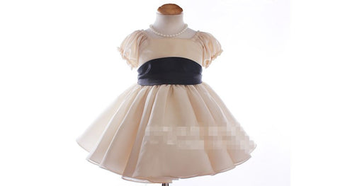 Elegant Flower Girl Dress Party Dress PD-AO027